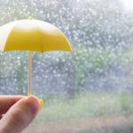 雨天時にポスティングするときの工夫すべき点とは?